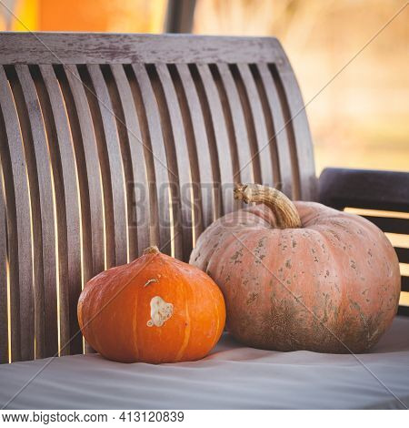 Close-up Wooden Bench On The Veranda On A Sunny Summer Day With Two Orange Pumpkins. Country Life. T