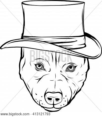 Draw In Black And White Of Pitbull Dog With Hat Vector Illustration Design