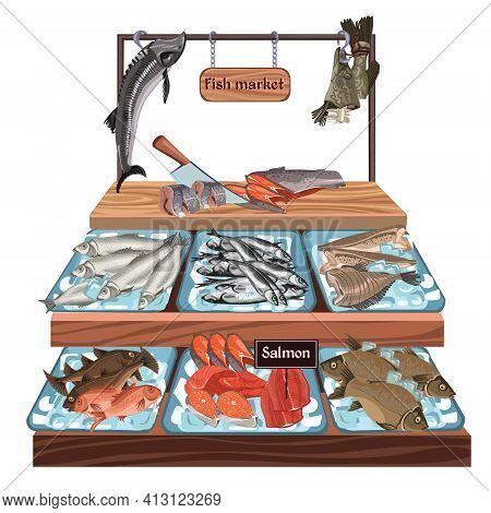 Sketch Seafood Market Concept With Herring Trout Carp Salmon Flounder Zander Perch Cod Sprat Fish Pr