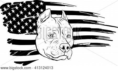 Draw In Black And White Of Head Pitbull With American Flag Vector Illustration