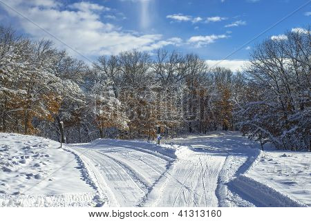 Criss Crossing Cross Country Ski Trails