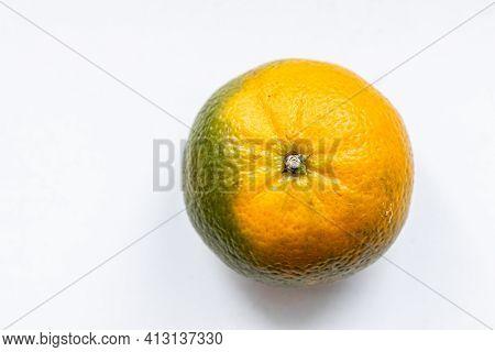 One Matte Unripe Tangerine  Orange Green Color On White Backdrop. Top View. Close-up, Macro. Right L