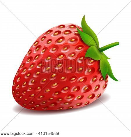 One Whole Strawberry. Fresh Red Ripe Mellow Berry On White Background. Realistic 3d Isolated Vector