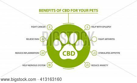 Information Poster Of Cannabidiol Benefits For Your Pets With Infographic