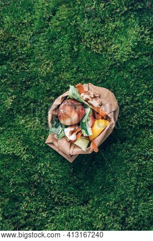Top View. Kitchen Food Waste Collected In Craft Paper Bag. Peeled Vegetables On Green Grass, Moss Ba