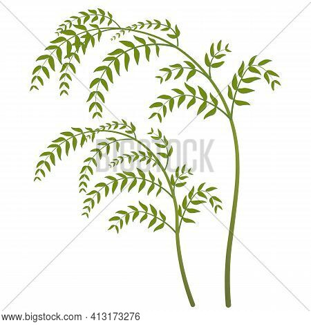 Bent Branch With Green Leaves. The Drooping Shape Of The Branches. Hand Drawn.