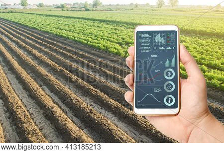 Hand Holds Mobile Phone With Crop Status Analysis Infographics. Quality Control. Innovative Modern T