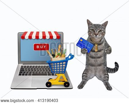 A Gray Cat With A Credit Card Orders Food Online Using A Computer. White Background. Isolated.