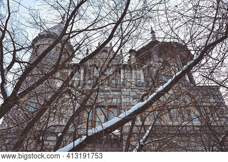 Gothic Castle In Winter, Outside View, Against The Sky, Winter Trees