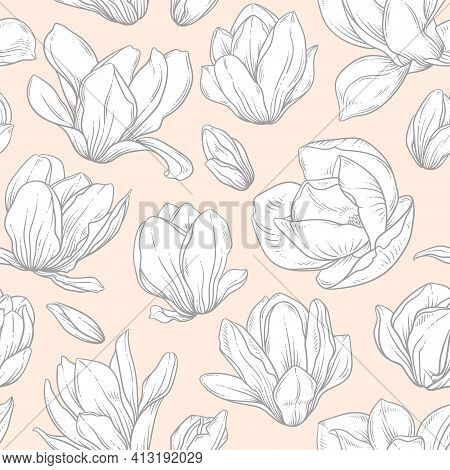 Seamless Pattern With Magnolia Flowers. Blooming Buds In Sketch Style On Beige Background. Imitation