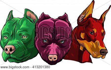 Heads Of Dogs Pitbull Dobermann Bulldog Vector