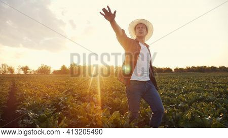 Agriculture. Farmer Man In A Walk On A Green Field Of A Field Of Healthy Food. Business Agriculture