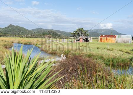 Expansive Farmland On Great Barrier Island With Rusting Corrugated Iron Sheds New Zealand.