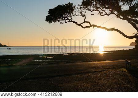 Pohutukawa Tree Branch Overhanging Beach And Framing Sun Just Above Horizon At Mulberry Grove Beach