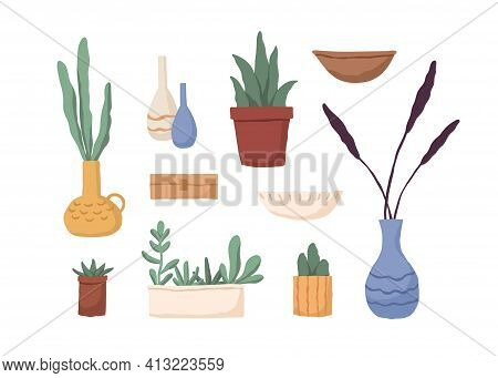 Set Of Different Houseplants In Pots, Vases, Boxes And Flowerpots. Modern Interior Plants, Succulent