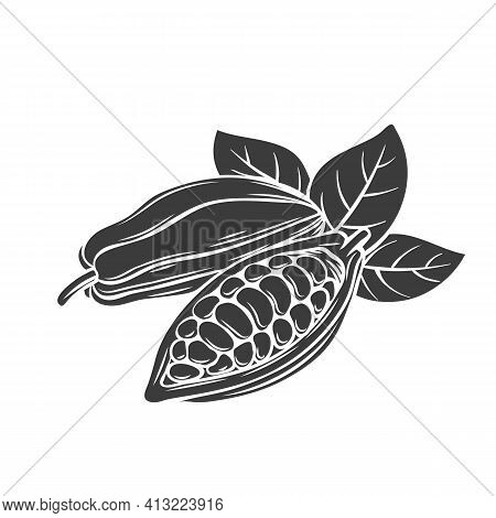 Cocoa Bean Glyph Icon, Vector Cut Monochrome Badge. Cocoa Bean In The Old Ink Style.