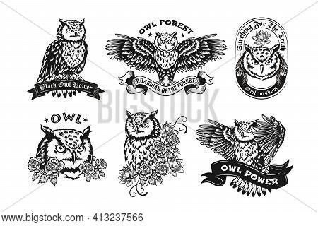 Black Label Designs With Owls Vector Illustration Set. Vintage Badges With Flying Night Owl Or Eagle