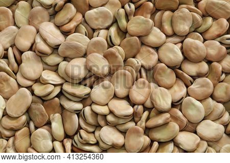 dried broad beans background texture