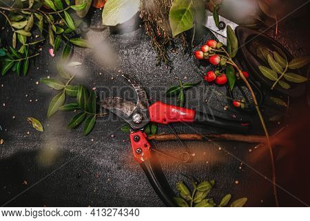 Work Of Florist And Flower Designer.pruning Shears, Scissors And Leaves Are On Black Board. Floristi