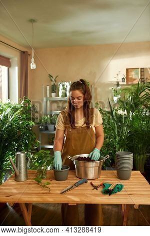 Young Girl Working In The Garden. Home Garden Concept. Gardener Standing At The Table With New Seedl