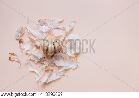 Bulb Of Peeled Garlic In Bunch Of Husks, On A Pink Background, Top View. Liberation Concept, Freedom