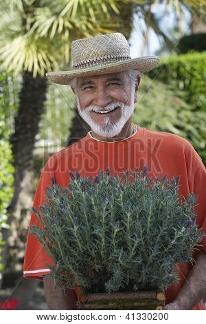 Portrait of a happy senior man holding potted plant at lawn