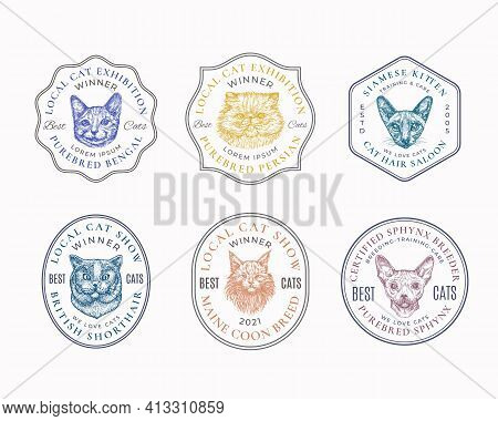 Cat Breeds Frame Badges Or Logo Templates Collection. Hand Drawn Sphynx, Bengal, Siamese, Maine Coon