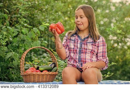 Eco Farming. Girl Cute Smiling Child Living Healthy Life. Healthy Lifestyle. Kid Gathering Vegetable