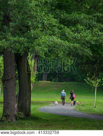 Graz/austria - June 24, 2019:people Walking With Dogs In The Park, In Summertime, In Graz, Austria