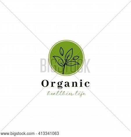Organic Herbal Leaf Tea Logo Icon In Simple Shoots Illustration