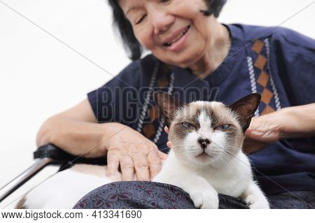 Elderly Woman Relaxed With Her Cat At Home