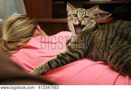 Aggressive Cat On The Back Of A Lying Woman. Pets. Aggressive Animals.