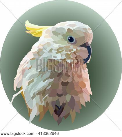 Portrait Of A White Yellow-crested Cockatoo On A Green Oval Background. A Cockatoo With Ruffled Feat