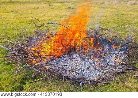 Waste Incineration At The Summer Cottage. Flames From Dry Burning Branches On The Field, Burnt Ashes