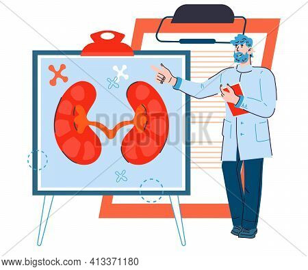 Doctor Male Cartoon Character Pointing At Banner With Image Of Kidneys, Flat Vector Illustration Iso