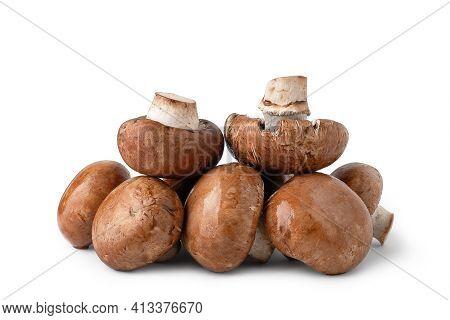 Raw Mushrooms Champignons Isolated On White Background. Brown Wet Mushrooms. Bunch Of Mushrooms. Nat