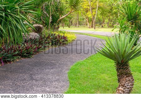 Walkway In Garden Of Public Park Among Greenery Trees, Flower Shrub And Bush, Grey Stone Pavement Wa