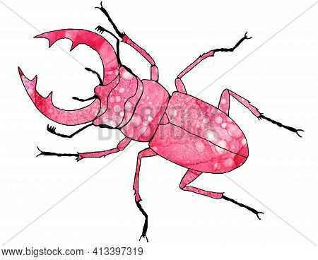 Stag Beetle. Stag Beetle With Large Antlers. Pink Big Beetle With A Bright, Decorated Body. A Beauti