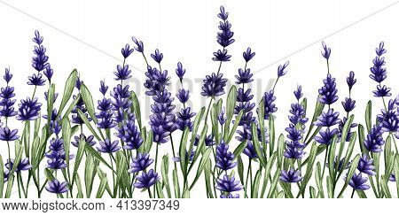 Sprigs Of Purple Lavender. Seamless Long Background Of Purple Wildflowers. Illustration In Watercolo
