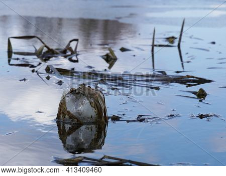 A Plastic Bottle Floating In River At The Water Surface, Environmental Problem With Plastics Polluti