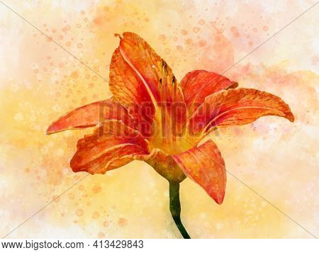 Watercolor Painting Of A Vibrant Orange Day Lily. Botanical Illustration