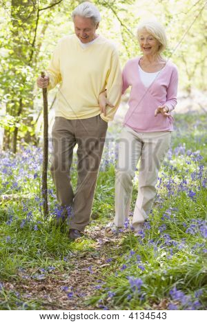 Couples walking through woods in springtime poster