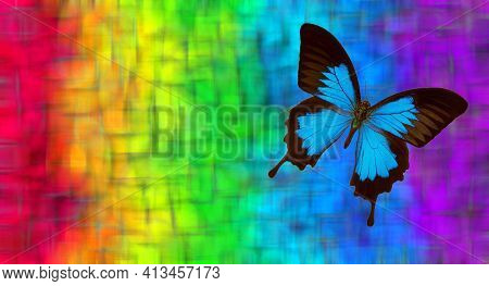 Colors Of Rainbow. Blue Tropical Butterfly Ulysses On A Blurred Multicolored Background.