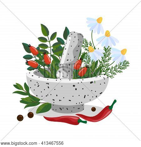 Herbals In A Stone Mortar Bowl. Herbal Mortar And Pestle. Medicinal Plants - Chamomile, Rosehip, Pep