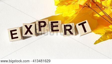Expert Word Written On Wood Block. Expert Text On Table, Concept.