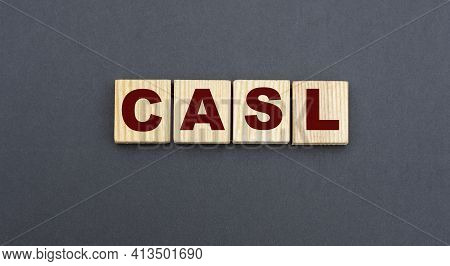 Concept Acronym Casl (chartered Advisor For Senior Living) On Wooden Cubes On A Gray Background. Bus