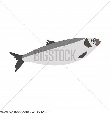 Fish Sea Herring. Hand-drawn Vector, Flat Style. Animals Of The Ocean, Nature, Atlantic. Healthy, Wh