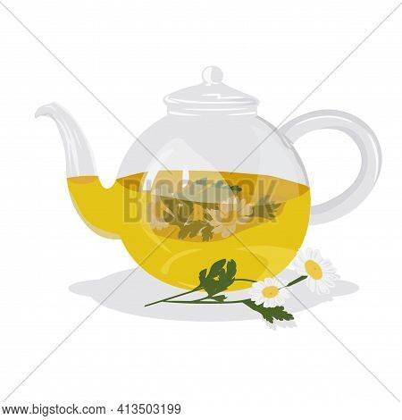 Chamomile Tea Vector Stock Illustration. Hot Herbal Drink In A Teapot For Colds. A Soothing Medical