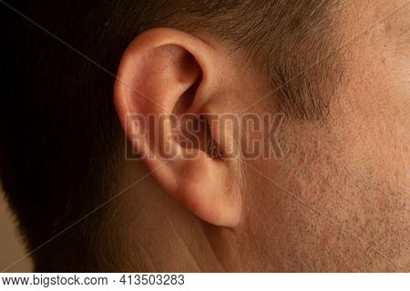 Male Ear. Macrophoto. Adult Ear Close-up Photo