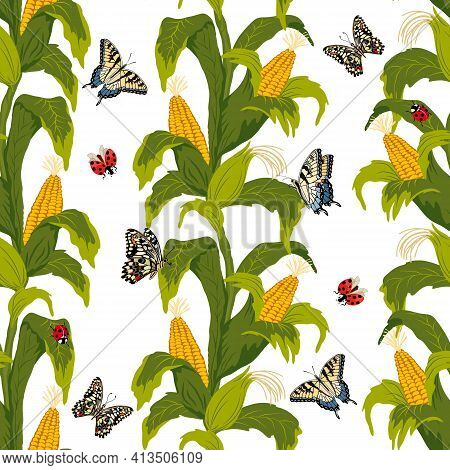 Vector Colored Pattern With Corn.corn And Butterflies On A White Background In A Shameless Pattern.